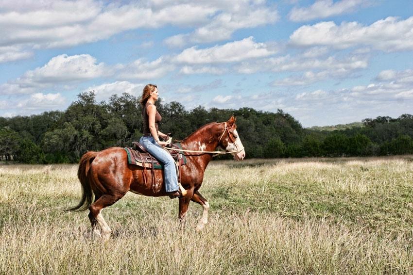 landscape photography in san antonio texas by jason roberts